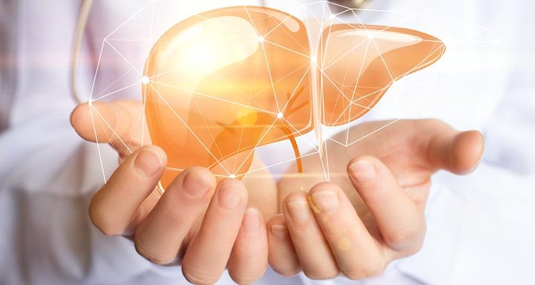 Makanan Yang Mengakibatkan Penyakit Fatty Liver